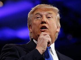 Дональд Трамп. Фото с сайта Discred.ru