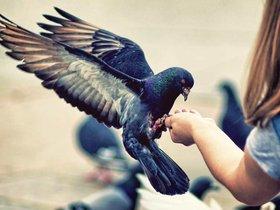 Фото с сайта Most-beauty.ru