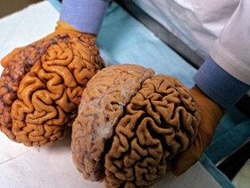 Фото с сайта go2life.net