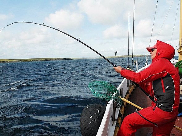 Фото с сайта seaanglers.blogspot.com