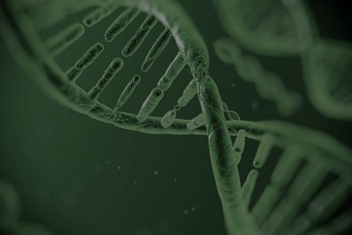 ФОТО: HI-TECH NATION. Медицина и биотехнологии