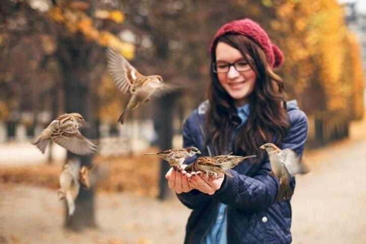 Фото: wallpapers.99px.ru