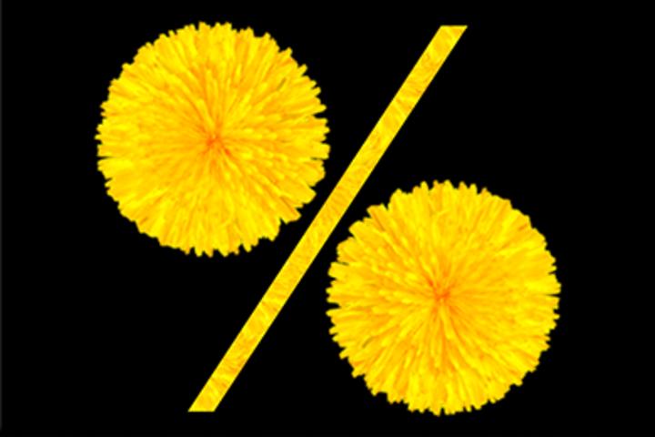 ФОТО: Как сохранить заказы в летний штиль? Ловите акции на рекламу от TUT.BY