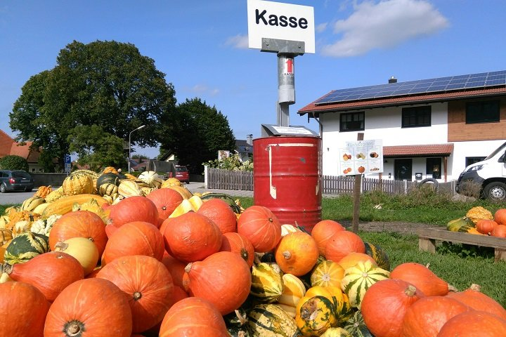 Кассы у каждого фермера могут выглядеть по разному, но принцип работы у них один. Фото: Таша Макей