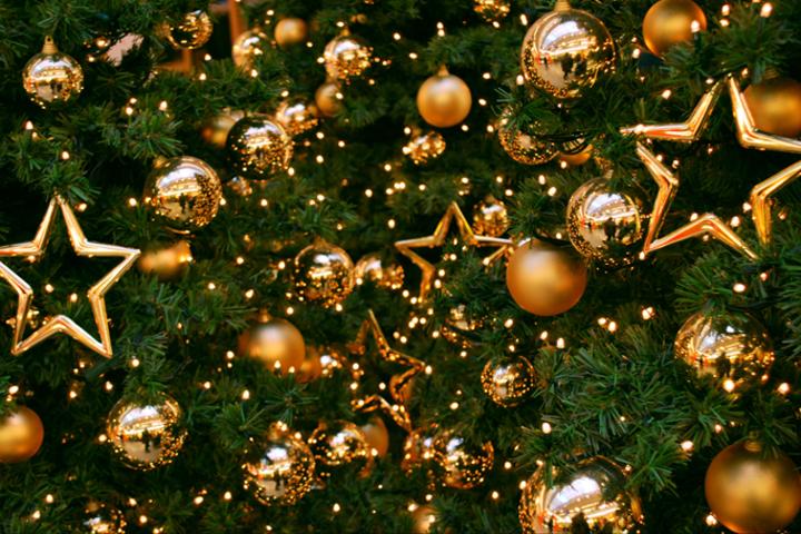 ФОТО: Новогоднее пожелание «Пробизнес.»