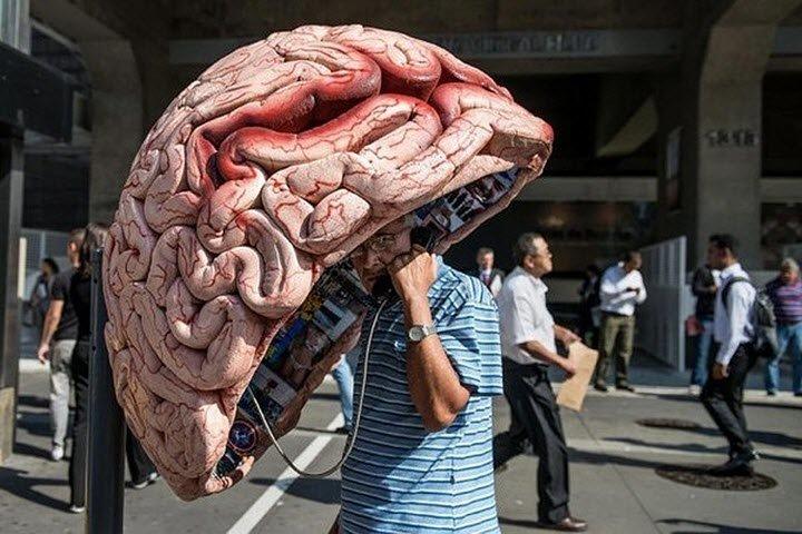 Фото с сайта news.sina.com.cn