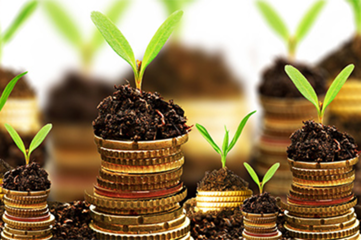 ФОТО: Деньги, которые нужны бизнесу