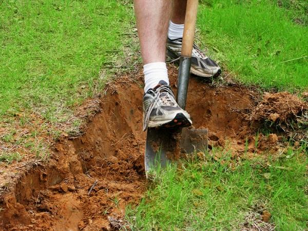 Фото с сайта dumblittleman.com