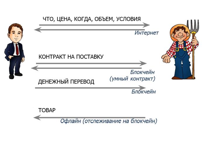 Фото из презентации Марины Гурьевой