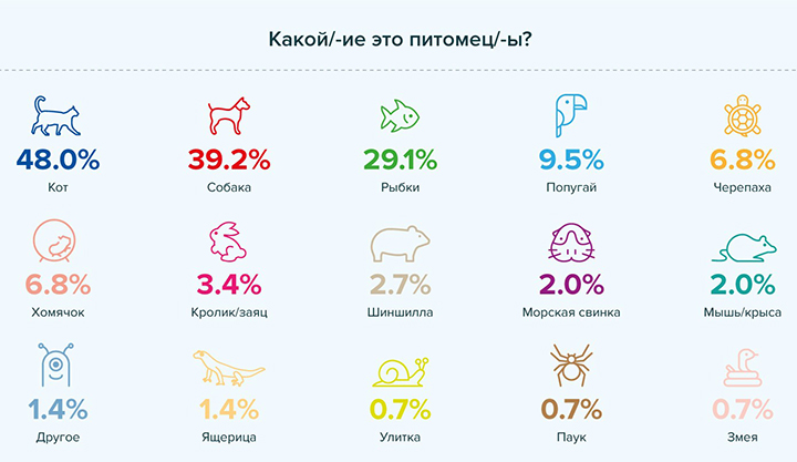Инфографика предоставлена PR-службой РАБОТА.TUT.BY