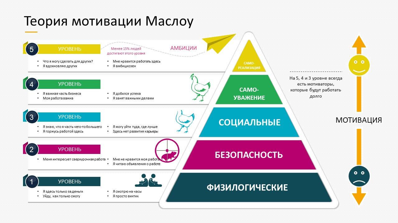 Фото: trainingtechnology.ru