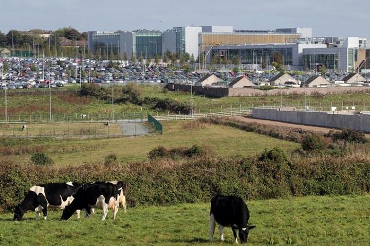 Ирландия. Фото с сайта www.dw.com