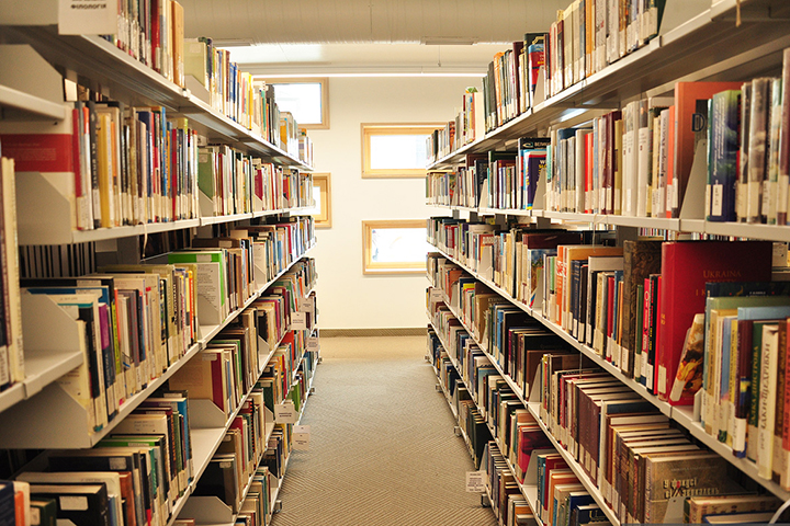 Фото с сайта shotam.info
