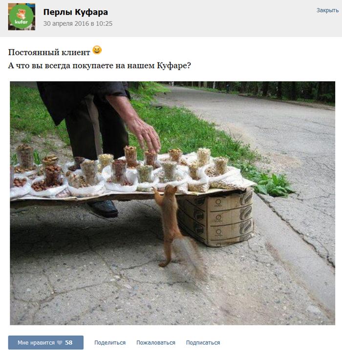 Скриншот из сообщества Перлы Куфара ВКонтакте