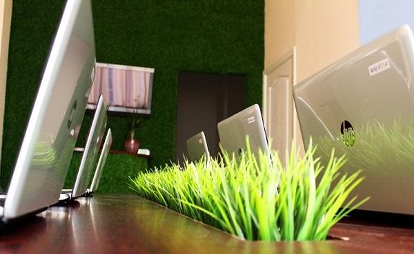 В офисе «Веб-мир». Фото TUT.BY