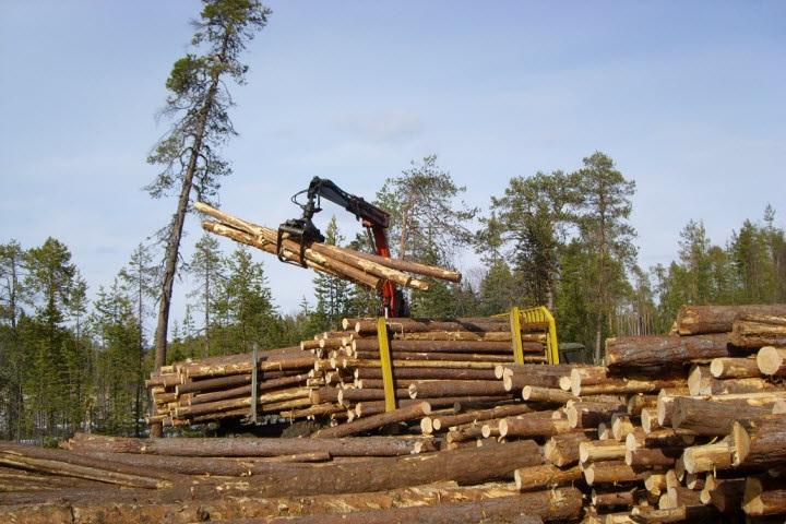 Фото с сайта www.ru.all.biz