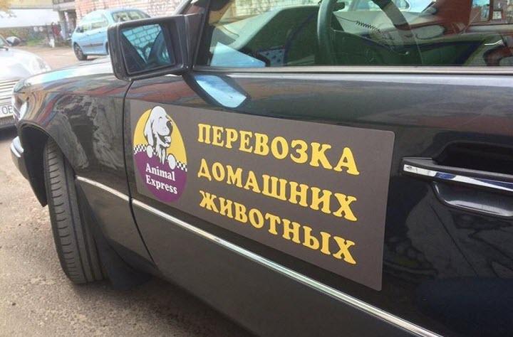 Фото с сайта zoomir-amur.ru