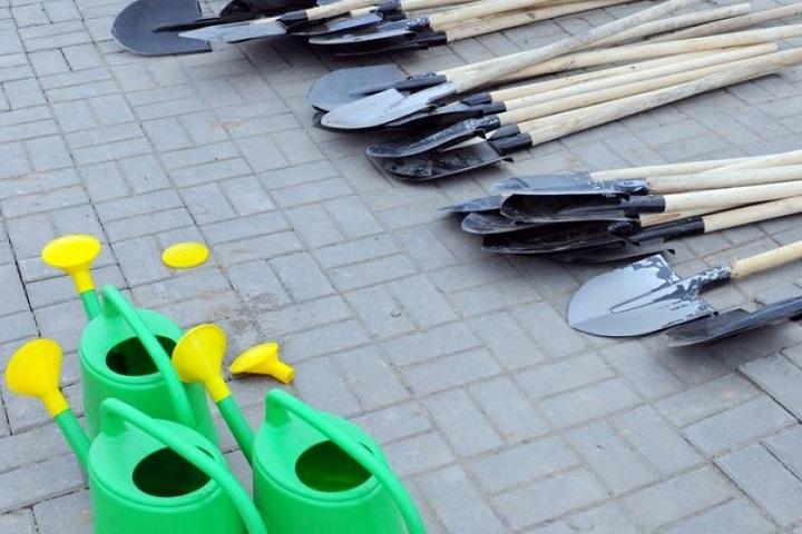 Фото с сайта www-cdn.b-g.by