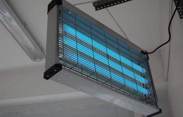 Бактерицидная лампа, используемая в пищевой промышленности. Фото с сайта afanasy.ru