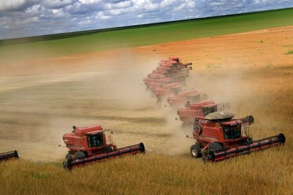 Фото с сайта farmer35.ru