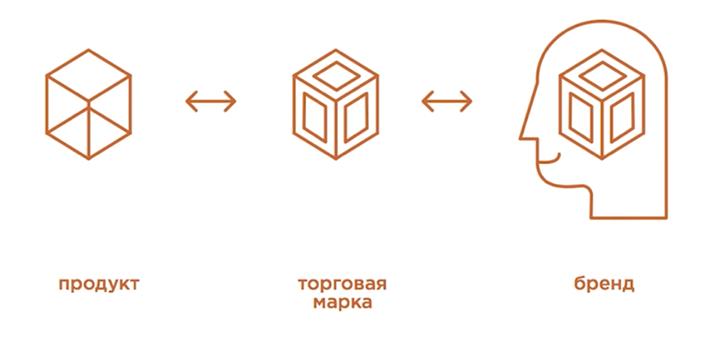 Иллюстрация Андрея Кожанова