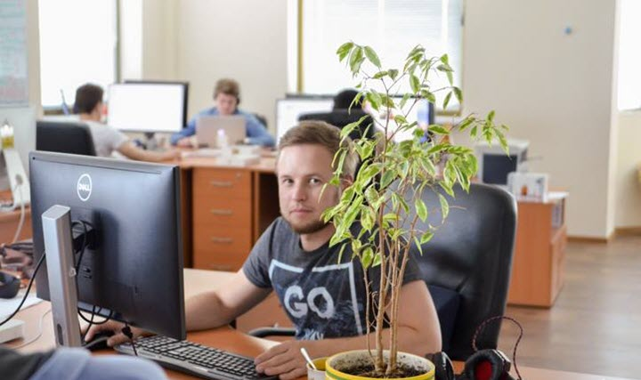 Фото из архива компании «СофтТеко»