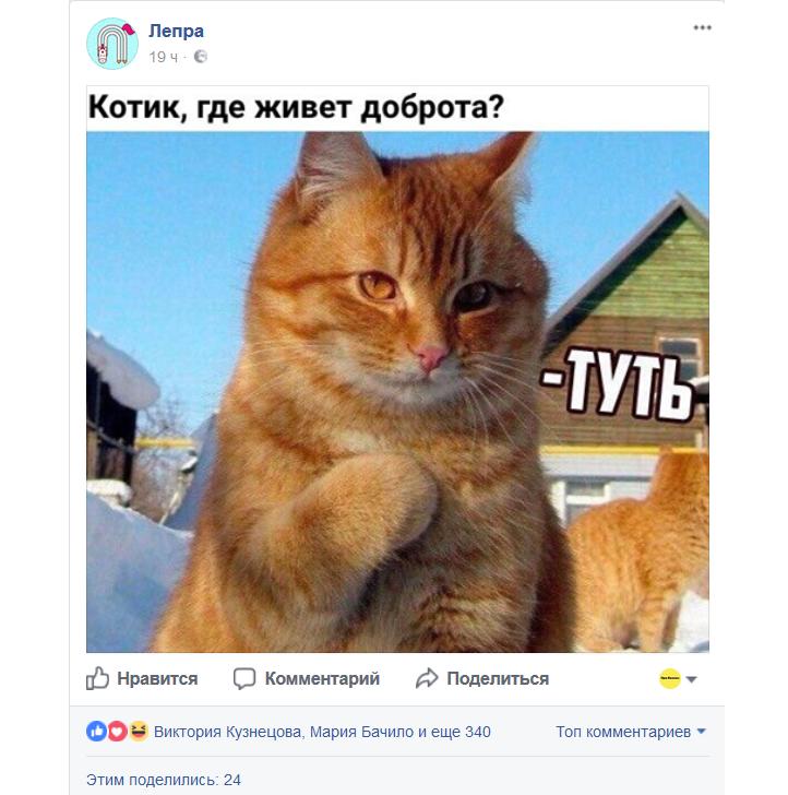 Скриншот из сообщества Лепра в Facebook