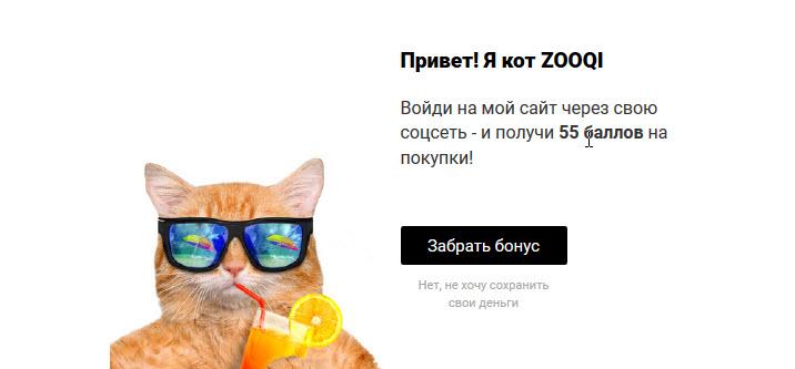 Скиншот с сайта zooqi.by