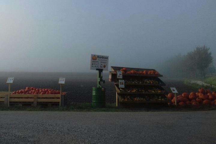Рано утром или ночью — такие магазины работают круглосуточно. Фото: Таша Макей