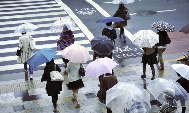 Фото с сайта Freepik.com