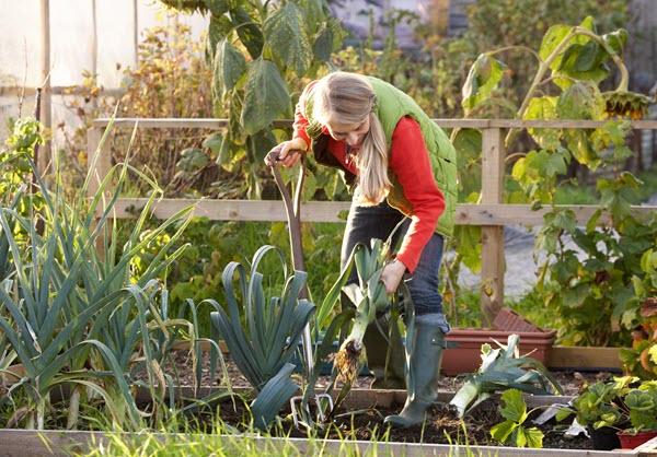 Фото с сайта caoping8.com