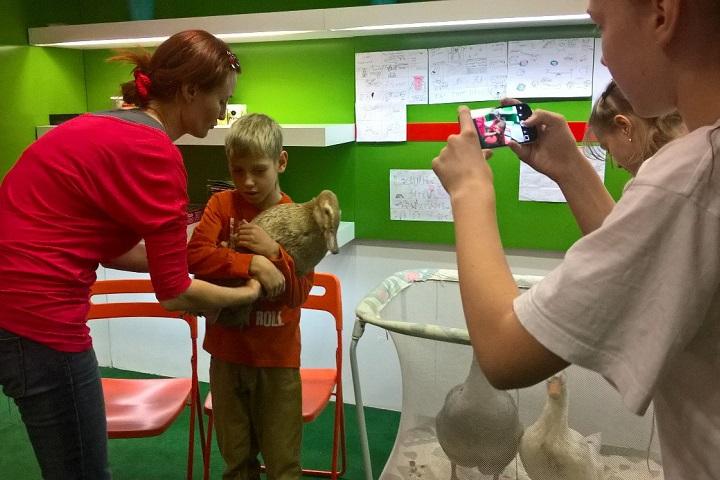 Фото с сайта www.iqdo.pro