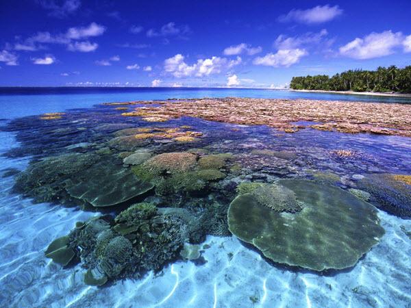 Маршалловы острова. Фото с сайта great-travel.ru