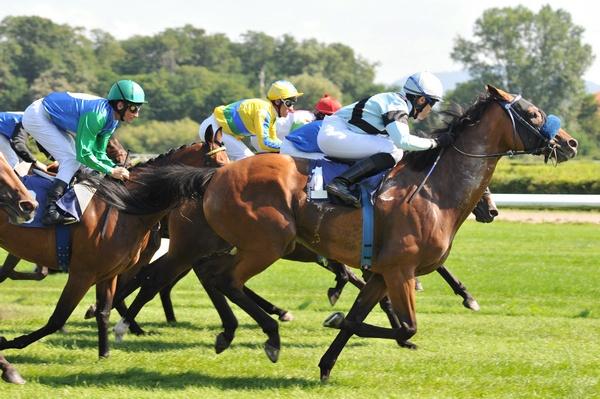 Фото с сайта delaemstavki.com