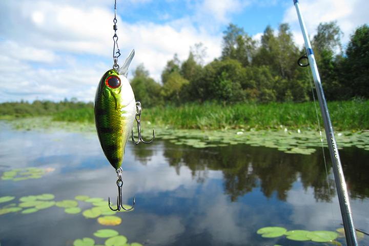 Фото с сайта rubalkahobbi.ru