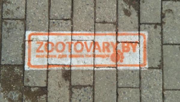 Реклама интернет-магазина zootovary.by