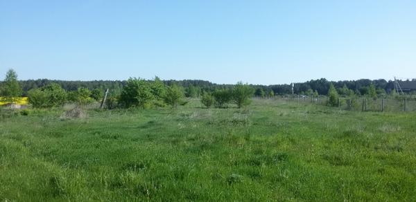 Место будущей агроусадьбы. Фото с сайта investar.by