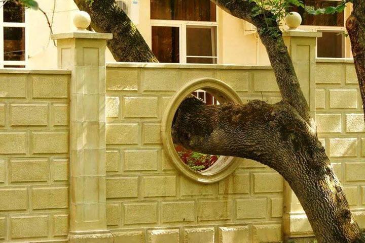 Фото с сайта ofigenno.com