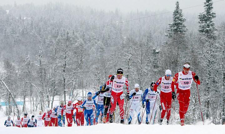 Фото с сайта komi-news.ru