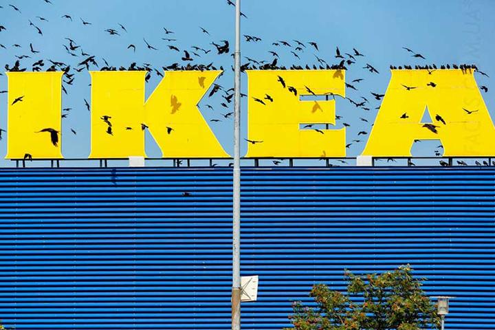 Фото с сайта topfacts.com.ua